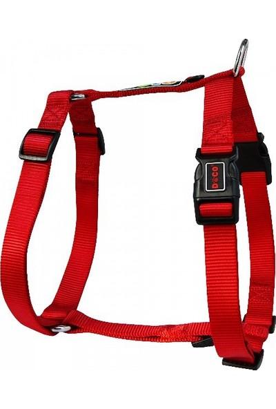 Doco Logolu Koşum Kayışı Puppy Kırmızı 1.0 x 25-33cm