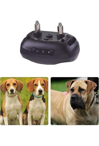 Peta Havlama Tasması Petainer 681S Son Sistem Şok Köpek Eğitim Tasması