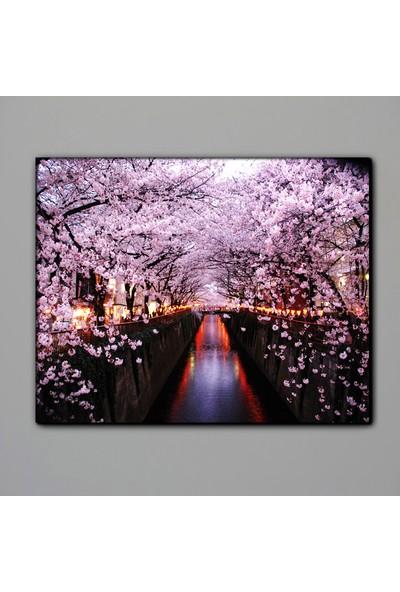 Dekomuz Nehir ve Çiçekler Kanvas Tablo 140 x 100