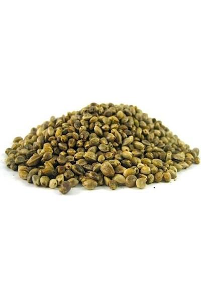 Atasagun Şifa Kenevir Tohumu 100 gr