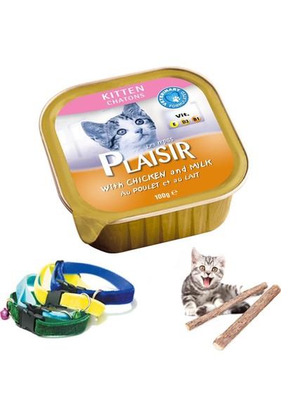 Plaisir Kitten Tavuklu Ve Sütlü Yavru Kedi Ezme Yaş Maması 24X100 Gr, Tasma Ve Catnip Çubukları
