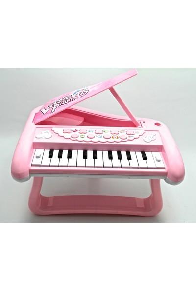 Vardem Kutulu Pilli Sesli Işıklı Piano Pembe