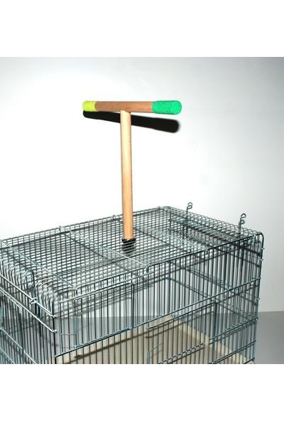 Naturbird Papağan T Tünek