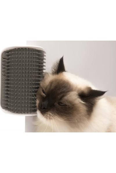 Kaktüs Kedi Kıl Toplama Ve Kedi Kaşınma Aparatı 711157
