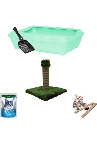 Petfony Açık Kedi Tuvaleti, Tırmalama, Plasir Yaş Mama, Catnip
