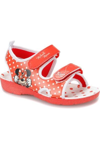Mickey Mouse 91.Essel-3.P Kırmızı Kız Çocuk Sandalet