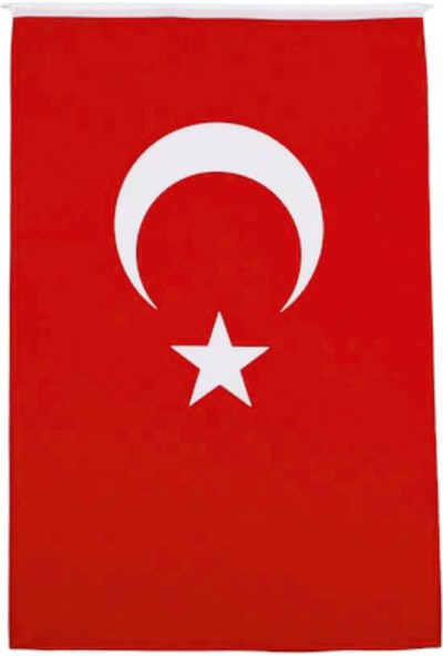 Ayd Türk Bayrağı 1 Sınıf Alpaka Kumaş 50 x 75 cm