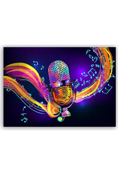 Diji Kanvas Renkli Mikrofon Kanvas Tablo