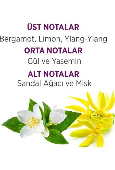 Bellissima Klasik Edt 60 Ml Bayan Parfümü 2 Adet