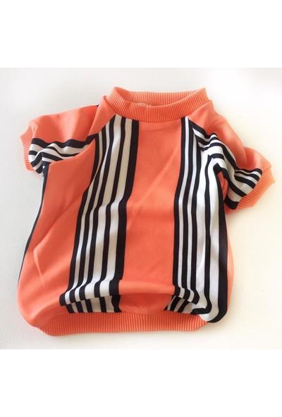 Kemique Stripe Orange Oval Yaka Tshirt Summer T Köpek Kiyafeti Köpek Elbisesi