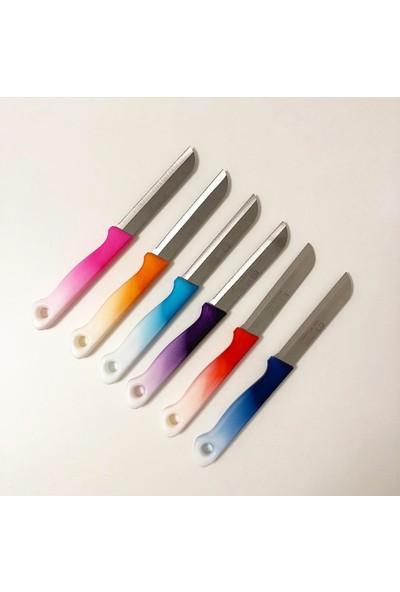 Solingen Meyve Sebze Bıçağı Tırtıklı 6'lı Karışık Renk