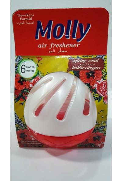 Molly Yavaş Salınımlı Oda Ve Oto Kokusu Spring Wind 75 ml
