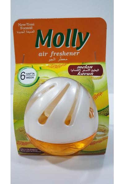 Molly Yavaş Salınımlı Oda Ve Oto Kokusu Kavun 75 ml