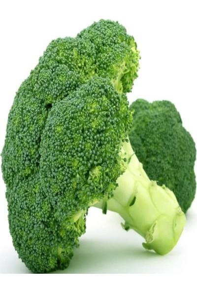 Evve Bahce Monet Brokoli Tohumu (20 Tohum)