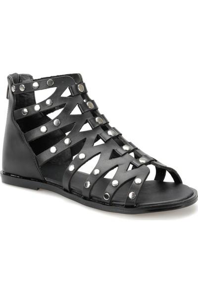 Butigo 19S-196 Siyah Kadın Sandalet