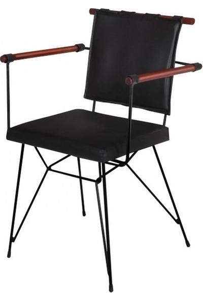Riş Mobilya Penyez Sandalye Mutfak Sandalyesi Salon Sandalyesi