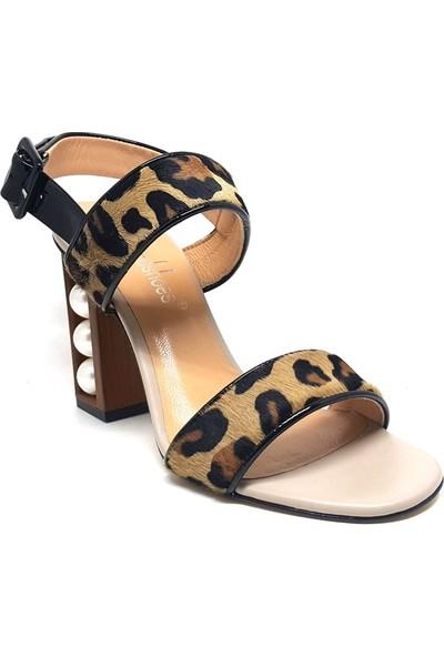 Shop And Shoes 104-81147 Kadın Ayakkabı Leopar