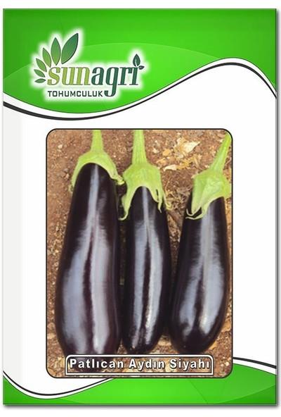 Sunagri Aydın Siyah Patlıcan Tohumu (10 Gr.)