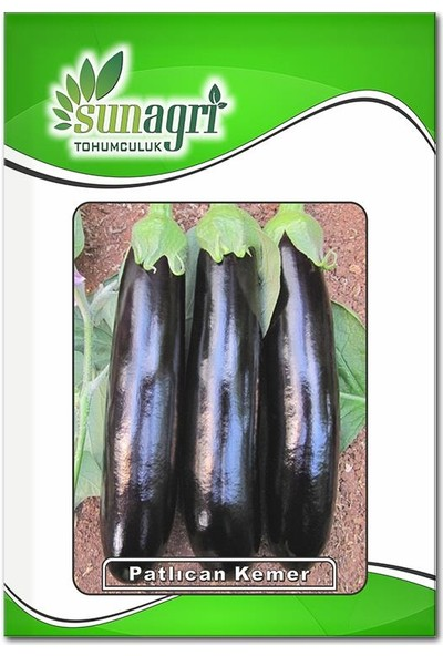 Sunagri Kemer Patlıcan Tohumu (10 Gr.)