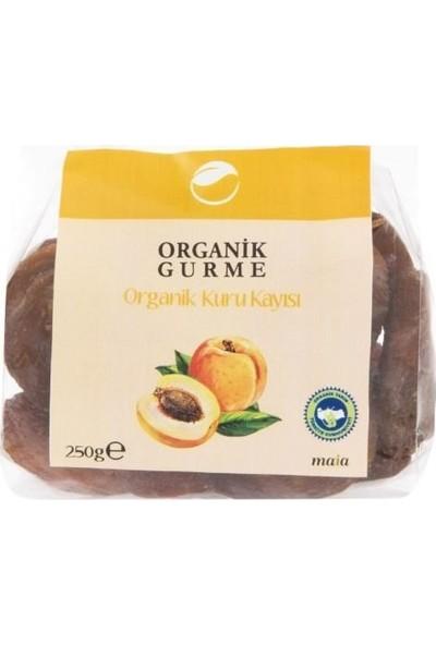 Organik Kayısı Kurusu - 250 gr