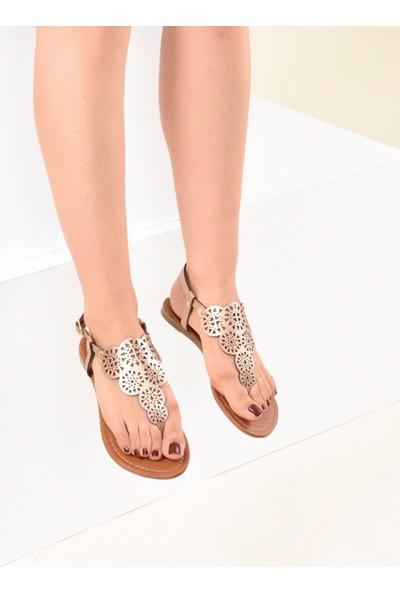 Fox Shoes Bronz Kadın Sandalet F713061009