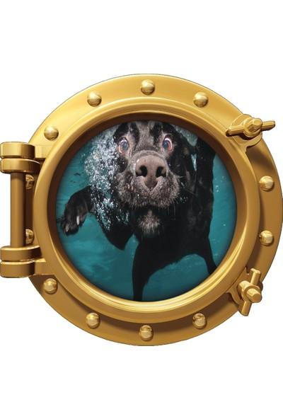 Renkselart Gemi Denizaltı Pencere Köpek Duvar Sticker