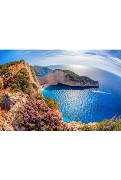 Ardeko Manzara Ada Çiçekler Ve Plaj Vinil Duvar Kağıdı Baskı 400 x 260 cm