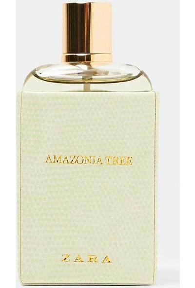 Zara Amazonia Tree Edp 100 ml