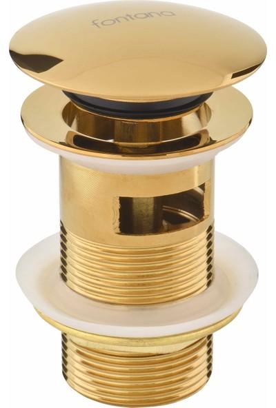 Fontana DR-02 GOLD SİFON ÜST TAKIMI