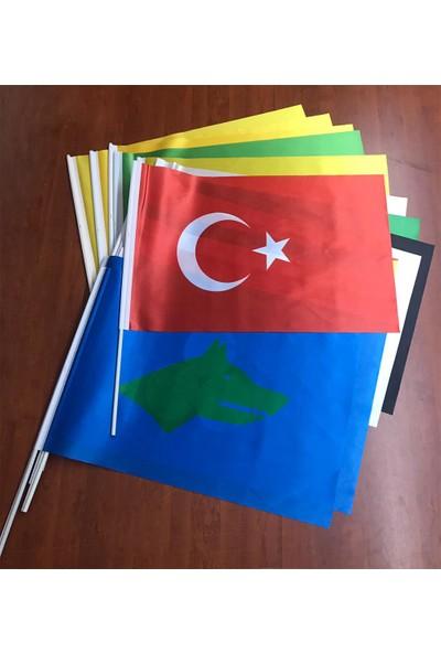 Gönder Bayrak Eski Türk Devletleri 17'Li Sopalı Seti 50X75Cm -
