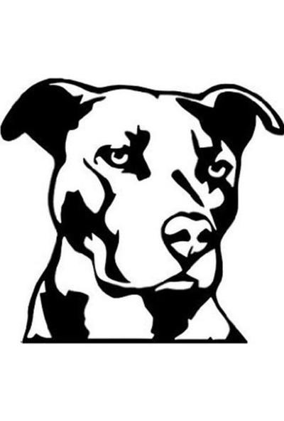 Areksan Sert Bakışlı Köpek Sticker
