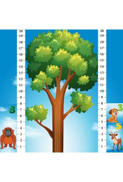 Learned Games Math Forest (Matematik Ormanı)