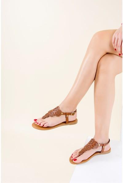 Fox Shoes Taba Kadın Sandalet F713061009