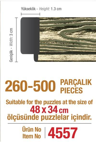 Art Puzzle Çerçevesi 500'lük Platin Yaldız Çerçeve