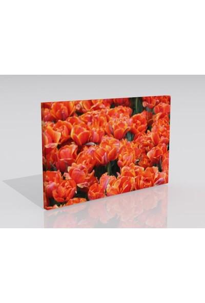 Moda Duvar Çiçek Temalı Kanvas Tablo 30 x 60 cm