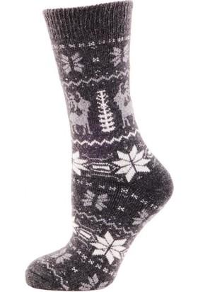 Panthzer Casual Wool Socks Çorap Antrasit