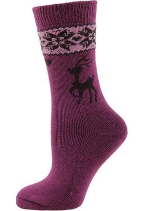 Panthzer Casual Wool Socks Çorap Mor Lila