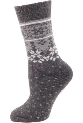 Panthzer Casual Wool Socks Erkek Çorap Gri