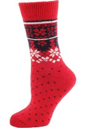 Panthzer Casual Wool Socks Erkek Çorap Kırmızı