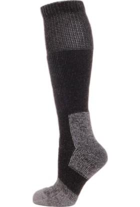 Panthzer Nature Extreme Cold Socks Erkek Çorap Antrasit Gri