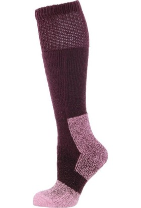 Panthzer Nature Extreme Cold Socks Kadın Çorap Mor
