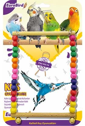 Eurobird Kuş Oyuncağı Renkli Boncuklu Kare Salıncak (ky05)