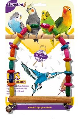 Eurobird Kuş Oyuncağı Boncuklu Oval Salıncak (ky11)