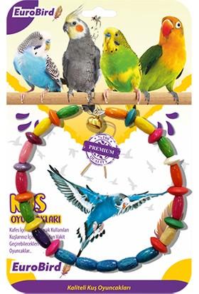 Eurobird Kuş Oyuncağı Renkli Daire Salıncak (ky13)