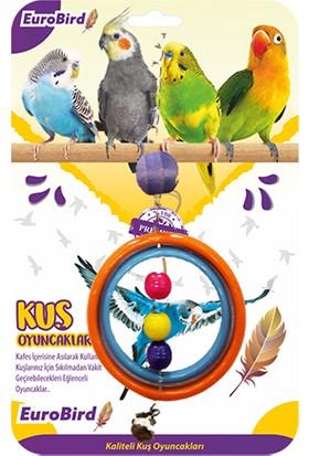 Eurobird Kuş Oyuncağı Renkli İçiçe Halka (ky48)