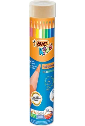 Bic Kids Evolution Kuru Boya Kalemi 12+1'Li Metal Tüp