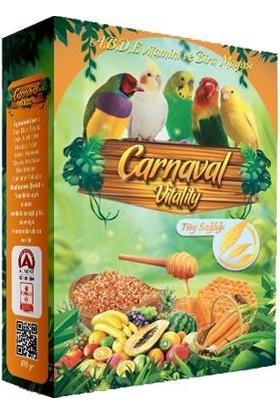 Carnaval Vitality Kuşlar İçin Tüy Sağlığı Desteği