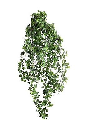 Euro Flora Yapay German Ivy Sarmaşık 120 cm