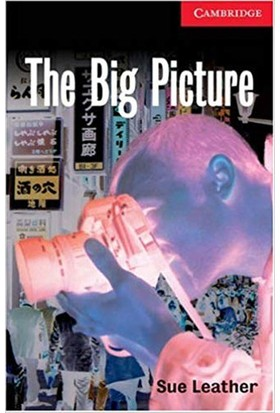 The Big Picture Level 1 - Sue Leather