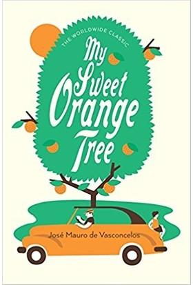 My Sweet Orange Tree (Hardcover)